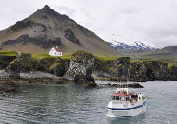 Mjög góð veiði hefur verið á öll veiðarfæri í Breiðafirði frá áramótum,