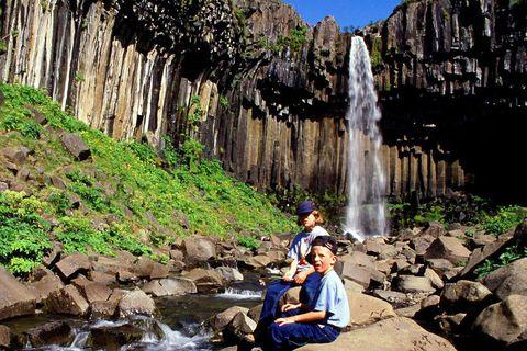 Svartifoss waterfall is a popular destination.