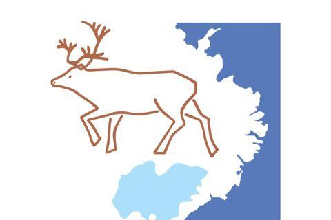 Lingua / Norðan Jökuls