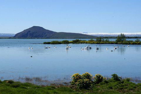 Mývatn, North Iceland.