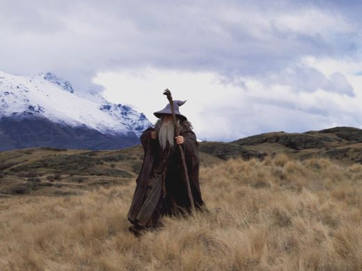 Lord of the Rings – The Fellowship of the Ring