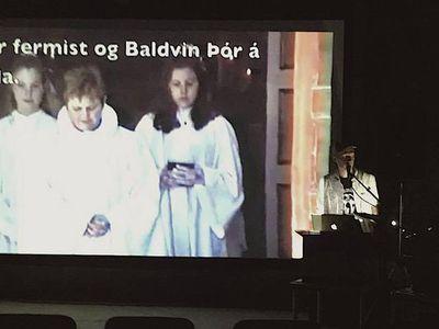 Icelandic Snitzel / Janus Bragi Jakobsson