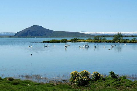 Note to tourists: Don't go rowing on Lake Mývatn.