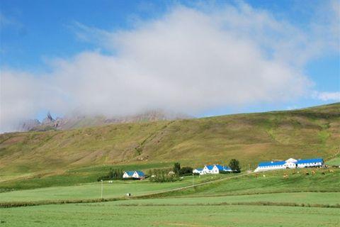 Auðnir Bed & Brekfast