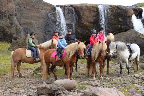 Giljar - Horses & Handcrafts