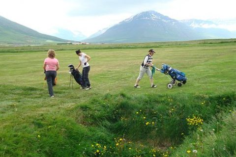 Hamar Golf club