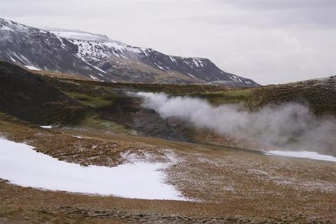 Reykjavik Safari