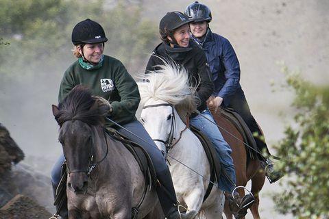 Íshestar Riding Tours