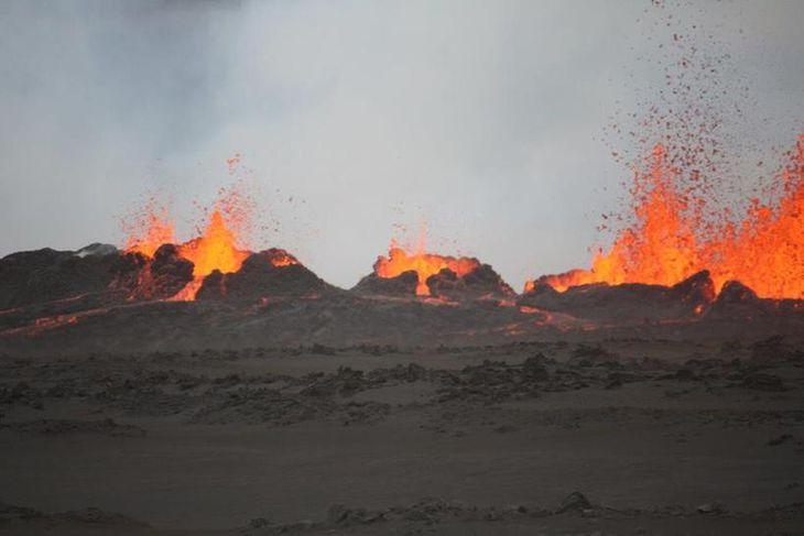 Strókarnir eru 20-30 metra háir.