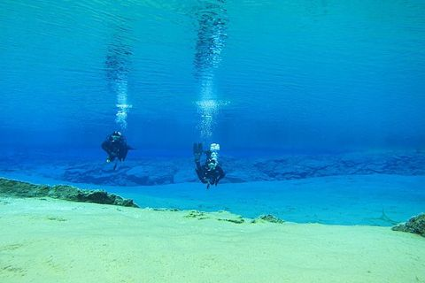 Dive Iceland