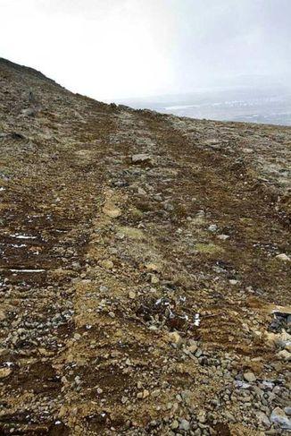 Til að komast að skurðstæðinu var gröfunni ekið um 40 metra eftir mosavaxinni hlíð.
