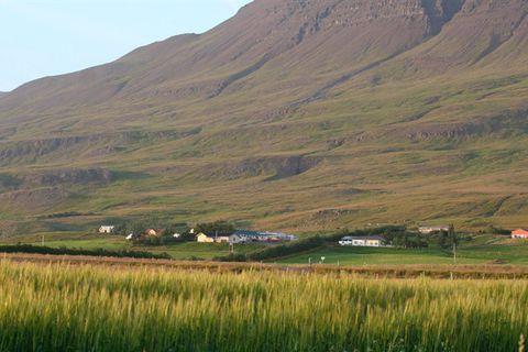 Gisting Hjaltastaðir