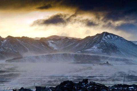 Discover Wild Iceland ehf