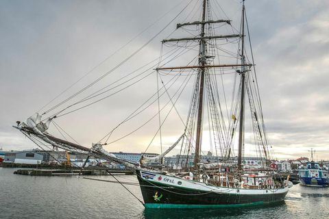 Travellers in Tromsø, North Norway can enjoy a whalewathing trip on this Icelandic scooner.