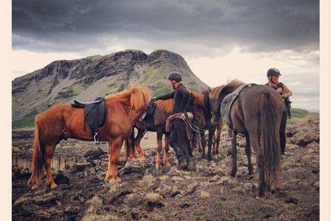 Horsetravel.is