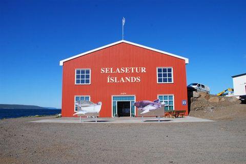 The Icelandic Seal Center