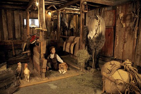 The Icelandic Horse History Centre