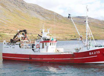 Þristur ÍS-360