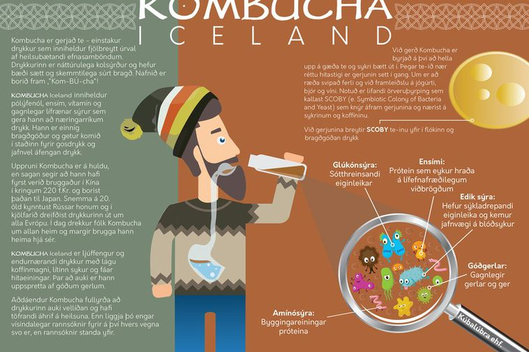 Kombucha Iceland is a new product.