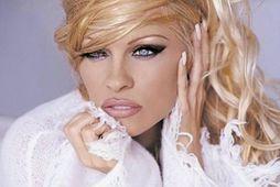 Pamela Anderson segist vita sitthvað um kynlíf og er nú með lausn fyrir karla að …
