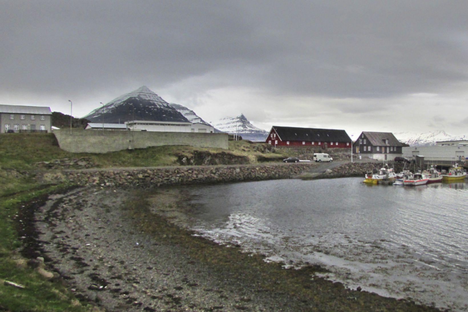 Vísir hefur ákveðið að hætta starfsemi sinni á Djúpavogi.
