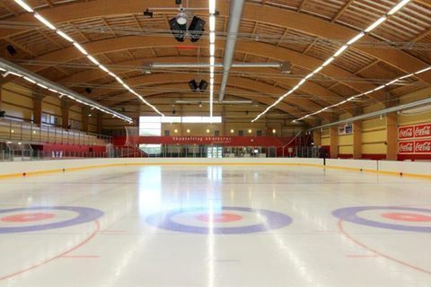 The Skating Arena