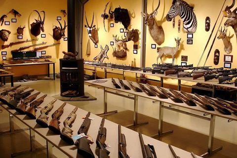 The Wildlife Museum