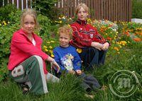 Bjarni, Emma og Fríða
