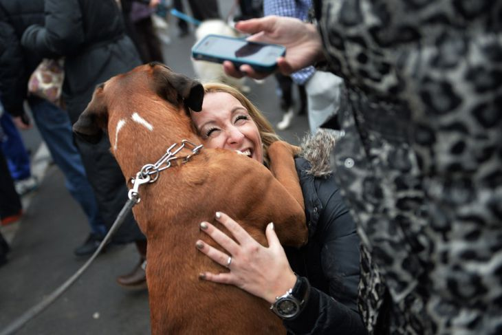 Kona knúsar hund í mótmælagöngu í Búkarest í Rúmeníu. Mótmælt var förgun flækingshunda í borginni.