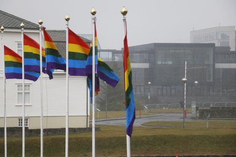 Flags flying in front of Advania.