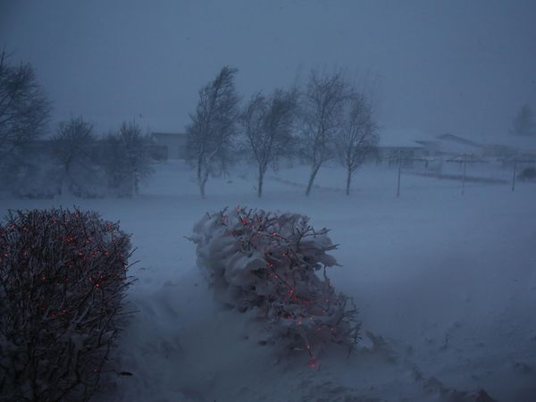 From Akureyri, North Iceland, today.