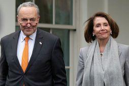 Nancy Pelosi og Chuck Schumer, leiðtogar demókrata í báðum deildum þingsins, fyrir fundinn í dag.