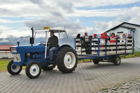 Locals guide tourists around the island on a tractor.