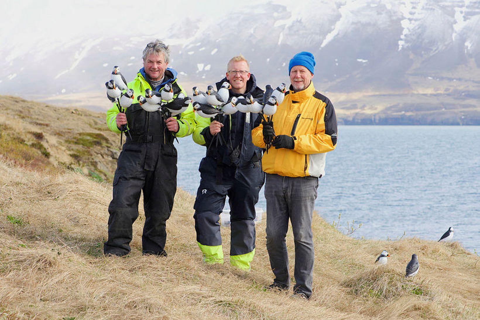 Árni Halldórsson, Freyr Antonsson og Bjarni Ómar Guðmundsson með lundana …