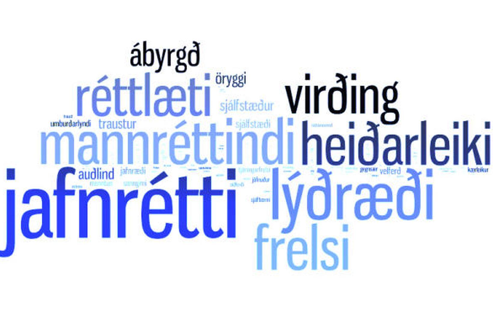 Jafnrétti, lýðræði, mannréttindi, virðing og ábyrgð er meðal helstu gilda …