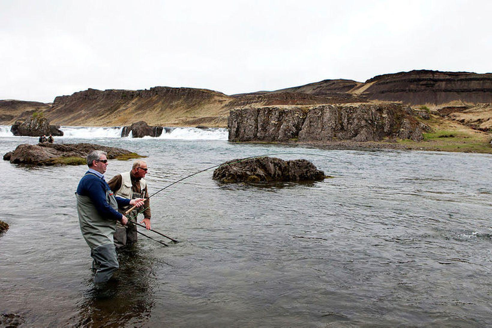 Þurrkatímabilið í maí og júní hefur haft slæm áhrif á …