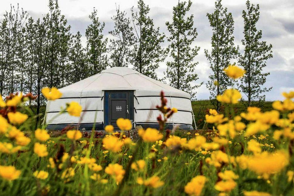 Yurt tjöld á Kjóastöðum