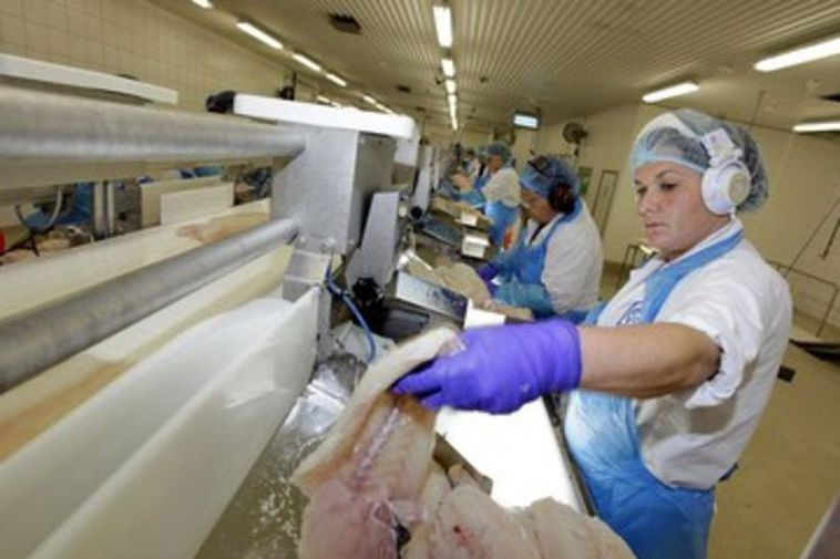 Fish processing will be severely affected by SGS strike action today and tomorrow.