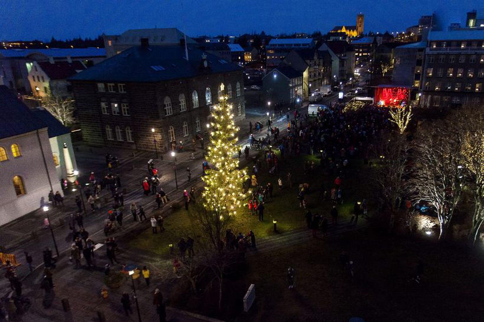 Ljósin tendruð á Óslóartrénu á Austurvelli á aðventunni 2013, hugsanlega …