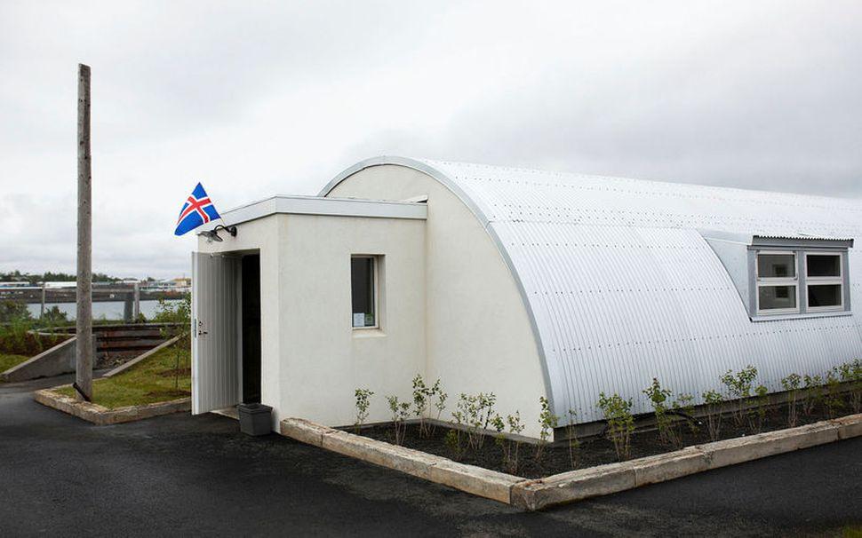 Stráin við braggan í Nauthólsvík eru af dúnmelstegund.