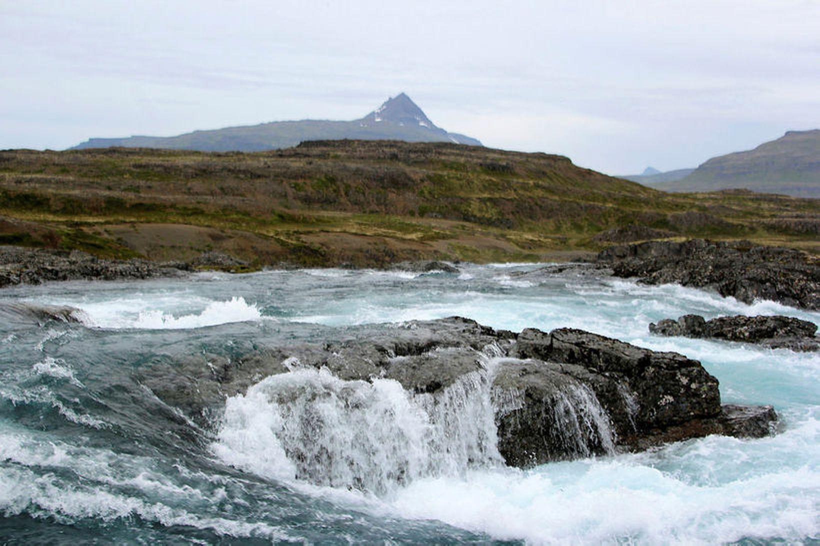 Hvalá nyrðri í Ófeigsfirði.