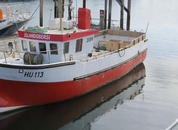 Íslandsbersi HU-113