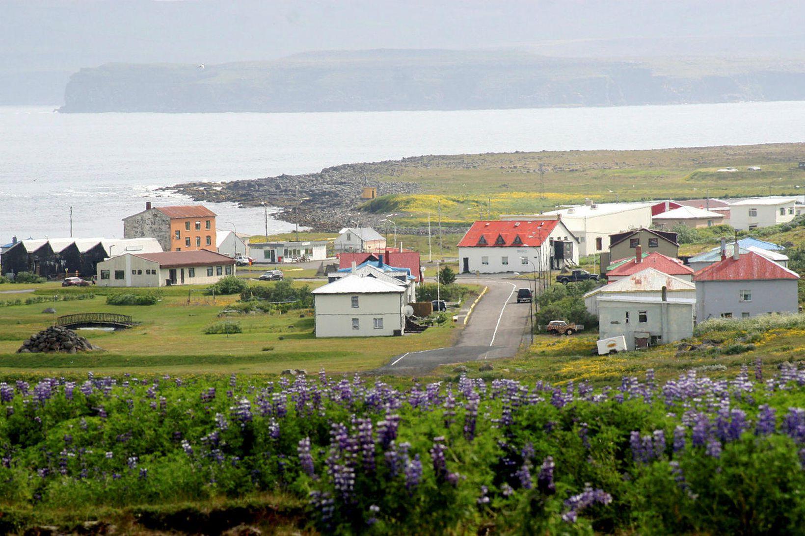 Sóttvarnarlæknir leggst gegn því að umferð til Raufarhafnar verði bönnuð.