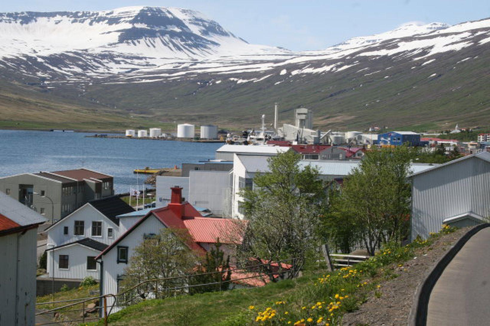 Meirihlutinn í bæjarstjórn Fjarðabyggðar heldur velli.