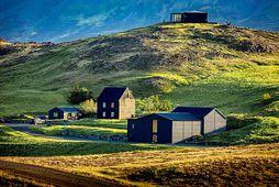Fjölskylda Skúla Mogensen á Hvammsvíkurjörðina í Hvalfirði.
