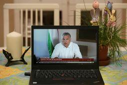 Forsætisráðherra Ungverjalands, Viktor Orbán.