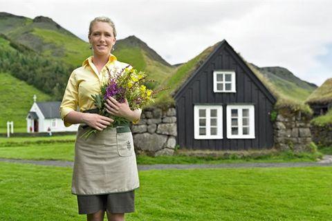 Hotel Edda Skogar
