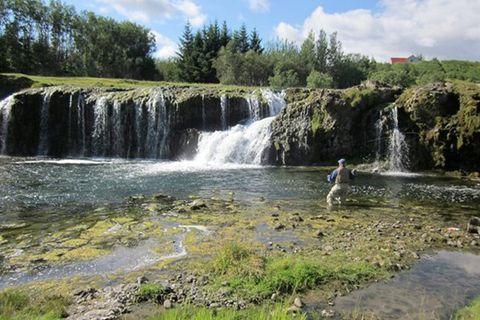 Go fishing Iceland