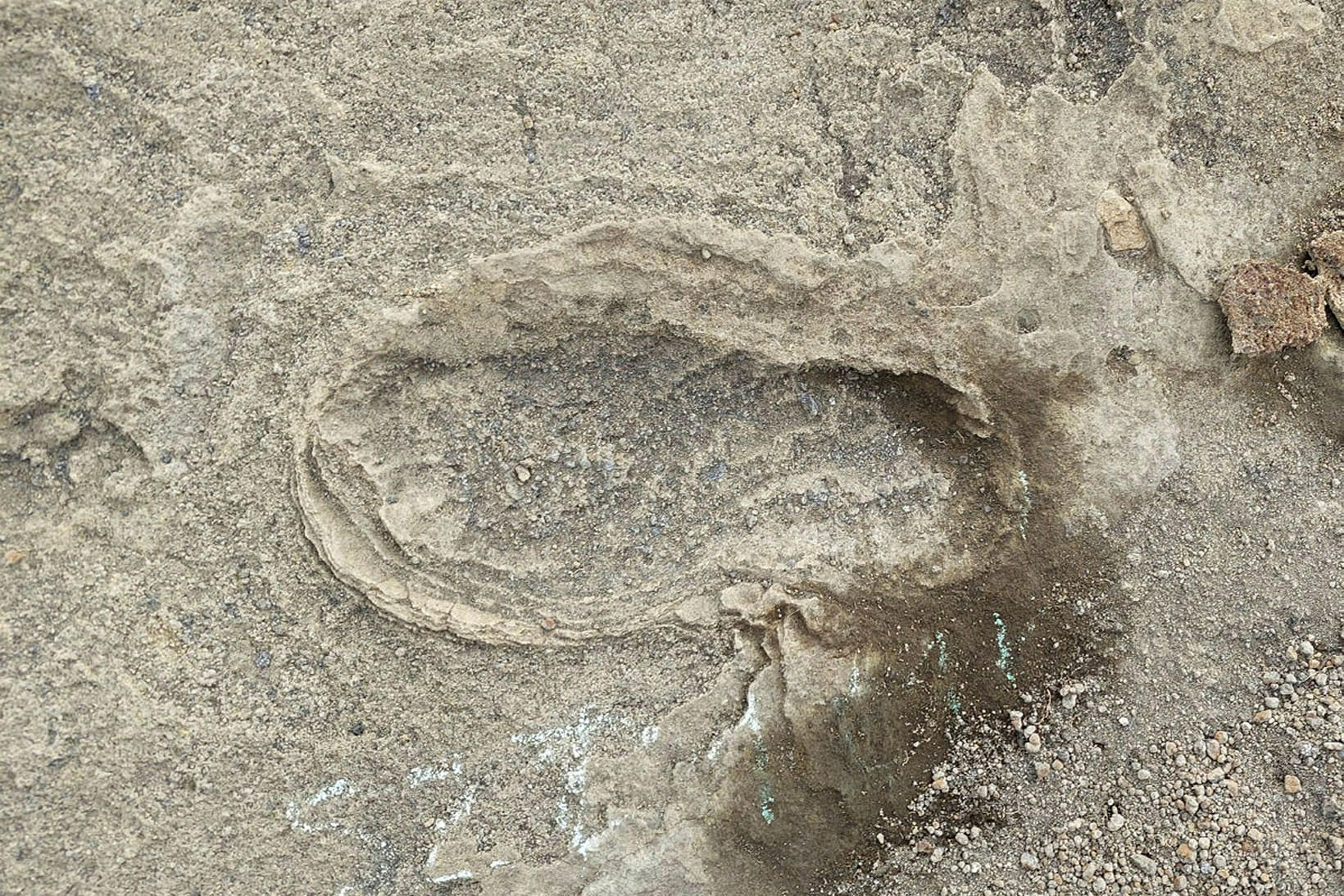 Surtsey. Fótspor sem stigin voru í gjósku eru nú orðin …