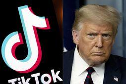 Samsett mynd af TikTok og Trump Bandaríkjaforseta.